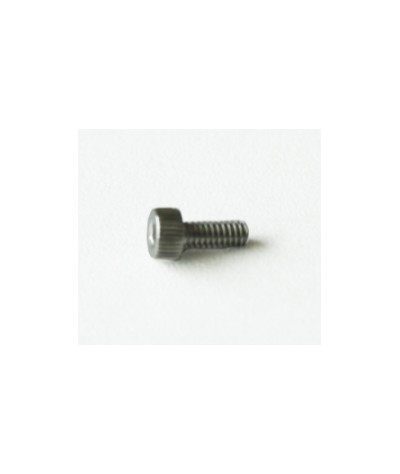 SCREW PAN SLT ST ST M2*5